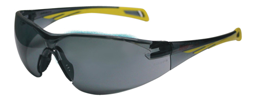Picture of Eyevex Safety Spectacles Executive SSP 1009